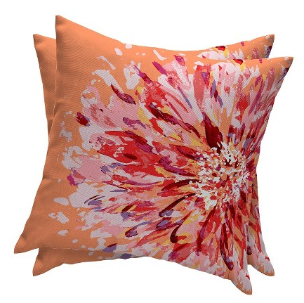 SAVE: Here are two outdoor pillows (in Orange Flame Flower) from Essentials at Target. The set comes at &19.98. *Make sure you're pillows are OUTDOOR pillows/fabric before keeping them outside long term!