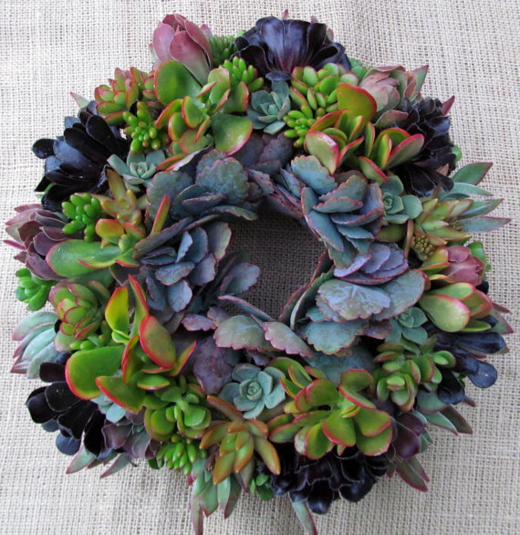 This is a succulent wreath from Succulent Solutions via Etsy! For only $70! We all know my obsession with succulents! How gorgeous is this wreath! I can just imagine this on a perfect Arizona door for Thanksgiving! Can I do this in Texas too?!