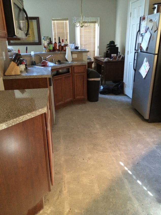 The tile AND mortar are gone in the kitchen! (excuse our messiness... it is hard to live in a construction zone and still be chic!)