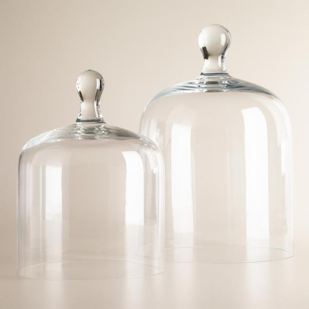Glass Cloche Terrariums from World Market ranging from $19.99-24.99